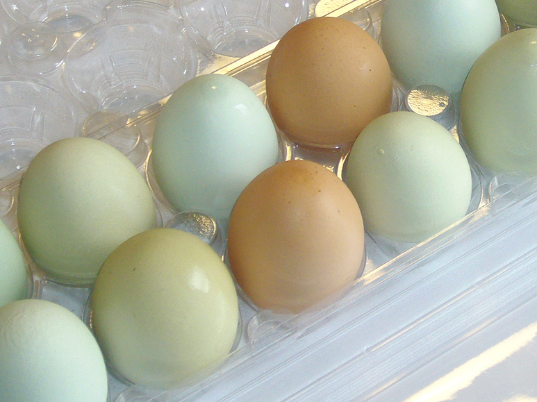 Get Real Resolution: April is Easter Eggstravaganza | Edible