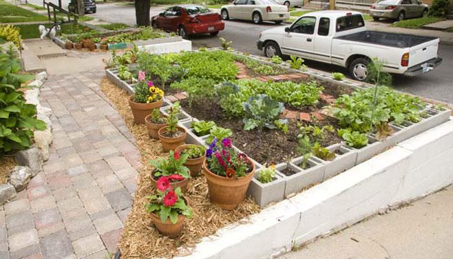 Eat Your Yard Urban Food Gardens Edible Kansas City