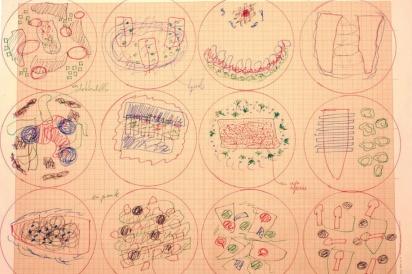 Ferran Adrià sketches